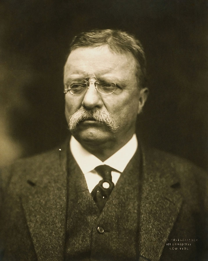 Among his many other achievements, Teddy Roosevelt can be credited with bringing the Freer Gallery, including the Peacock Room, to Washington. (Photo source: Wikipedia)