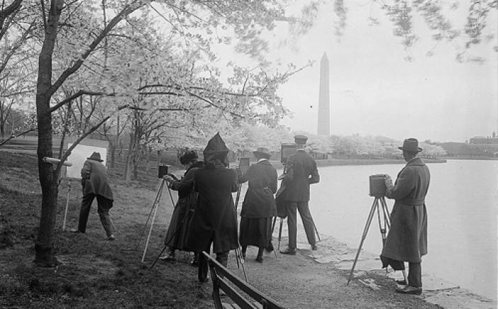 Photographers shooting cherry blossoms, Washington, D.C., April 7, 1922 (Library of Congress)