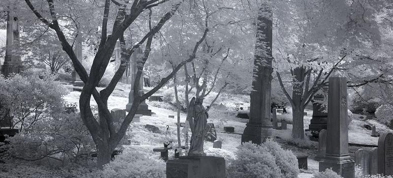 Oak Hill Cemetery in Washington, D.C. (Source: Library of Congress)