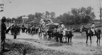Fugitive African Americans fording the Rappahannock River, July-August 1862