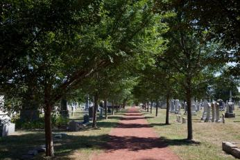View of a path through the Congressional Cemetery